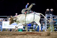 Beaudesert Rodeo 2015