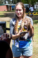 Black-headed Python with friend - Nimbin Show