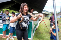 Black-headed Python w. young girl - Nimbin Show
