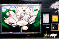 White flower WIP - Back Alley Gallery